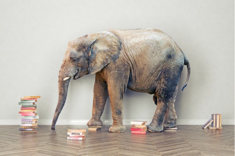 It's High Time to Finally Talk About the Big Elephant in U.S. Classrooms