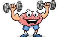 Brain workouts: Fact or Fad?